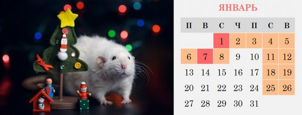 Январские праздники 2020
