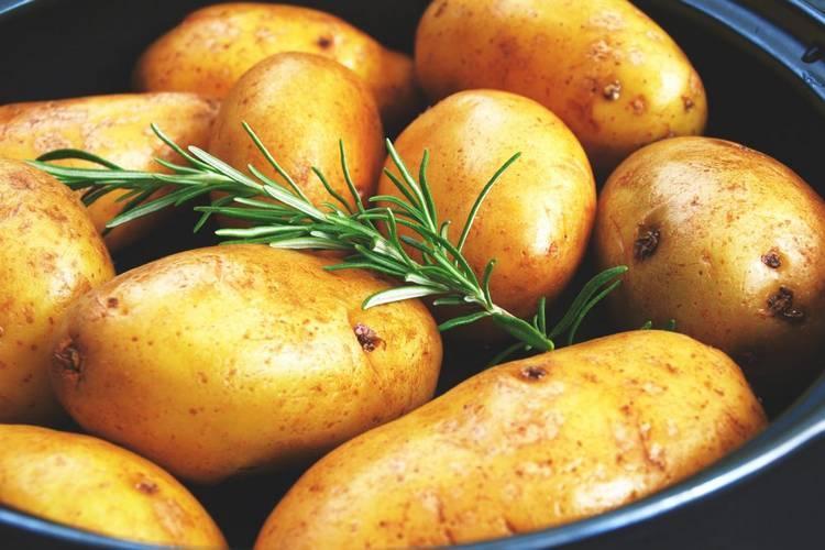 можно ли картошку при лактации