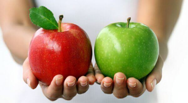 Какие яблоки можно есть