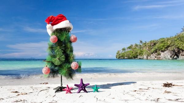 Куда поехать на новогодние праздники 2019 недорого на море