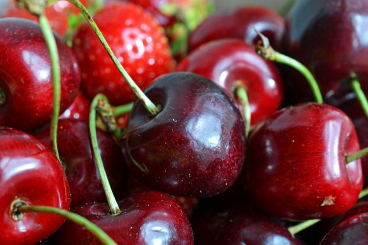 свежая вишня для кормящей матери