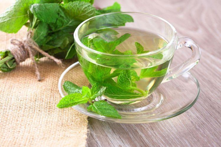 Чай с мятой при грудном вскармливании, можно ли