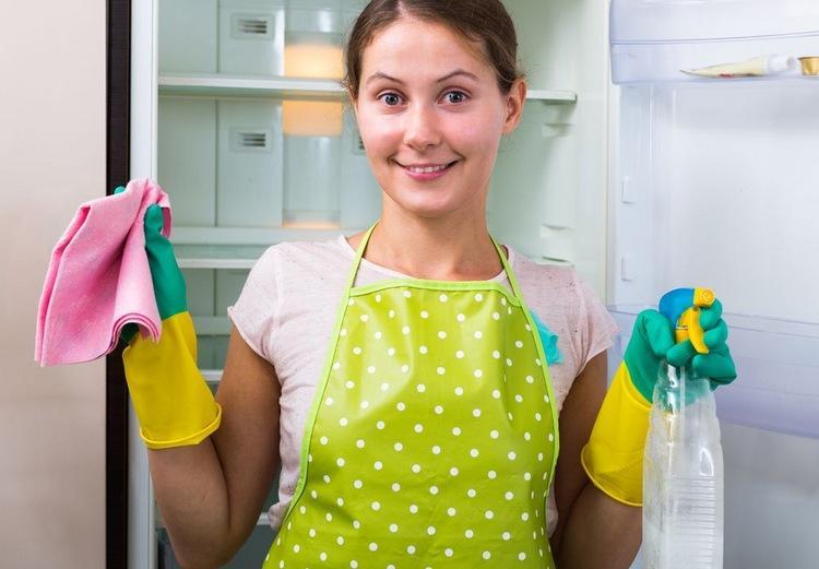 Правила очищения холодильника