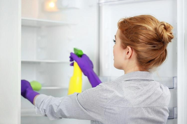 Чем помыть холодильник внутри после разморозки: способы