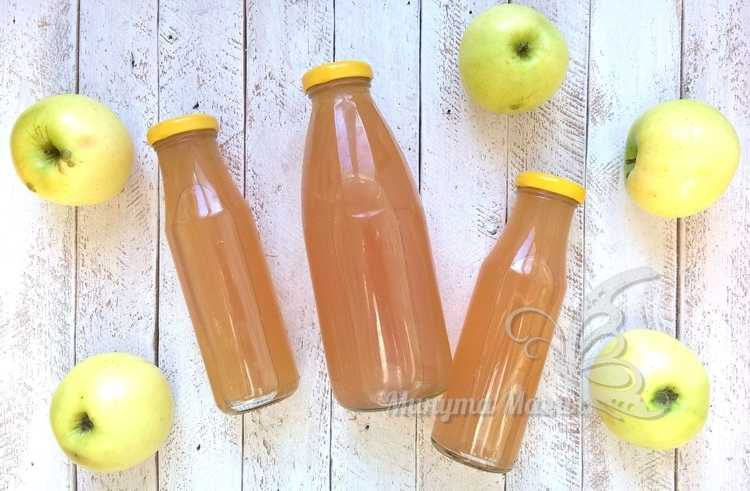 Яблочный сок на зиму через соковыжималку на зиму без варки