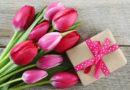 Что подарить на 8 марта девушке: недорогое, оригинальное, приятное