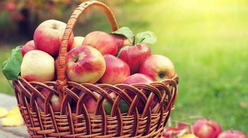 Яблочный Спас в 2020 году — какого числа будет в России