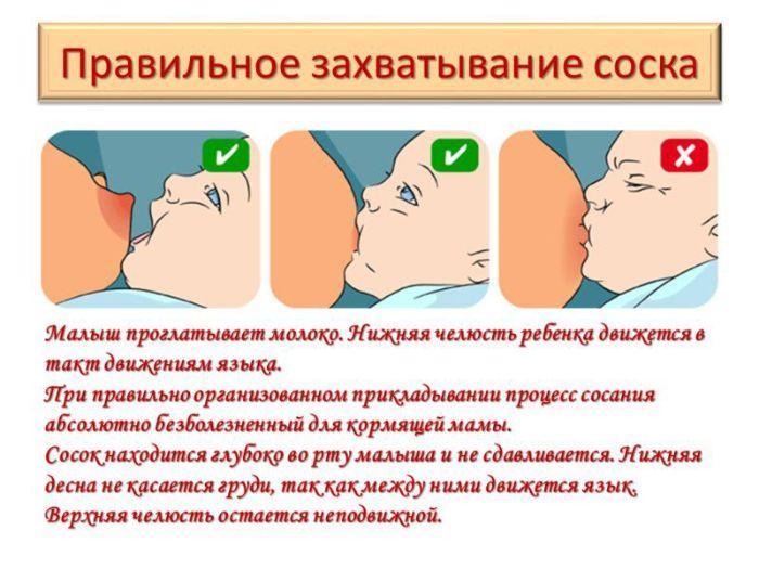 правила прикладывания к груди