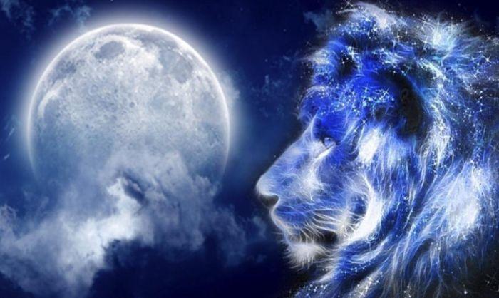 луна во льве что нельзя делать